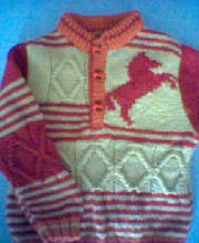 The red horse jumper